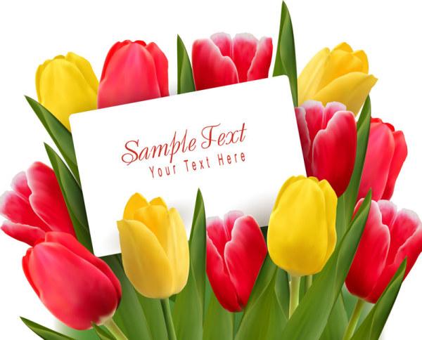 Valentine's Day Tulip Vector 05