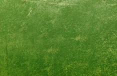 Grass Green Dilapidated Wall Background Texture