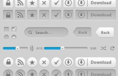 Set of Grey Web Buttons and Controls PSD