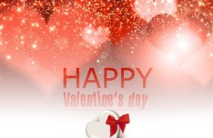 Elegant Happy Valentine's Day Background Vector 04