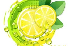 100 Natural Lemon Vector Illustration