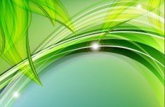 Vector Abstract Background With Green Leaves 05