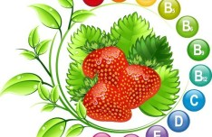 Fruit and Vitamins Vector Material 02