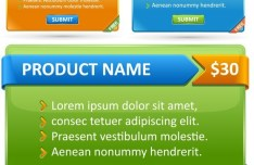 Product Details and Price Interface Vector