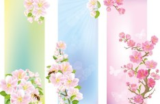 Colorful Vector Floral Banners 02