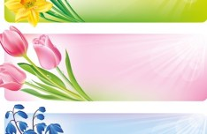 Colorful Vector Floral Banners 03