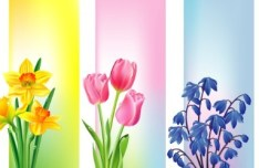 Colorful Vector Floral Banners 04