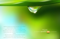 Spring Green Leaves Vector Background 02