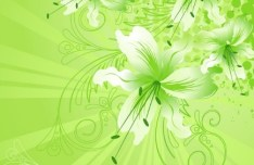 Colorful Spring Flowers Vector Background 01