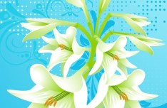 Colorful Spring Flowers Vector Background 02