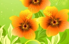 Colorful Spring Flowers Vector Background 05
