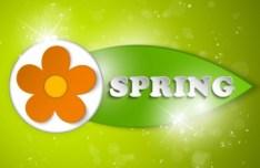 Paper Like Spring Flower Vector label 01