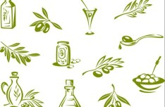 Vector Olive Oil Labels and Logos 03