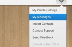 Settings Dropdown Menu Design Interface PSD
