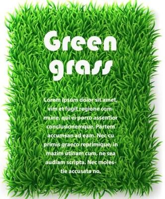 Vector Green Grass Background 03