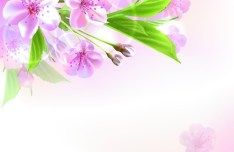 Fantastic Colorful Spring Flower Background 01