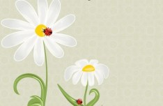 Fresh and Clean Spring Flower and Insect Background 01