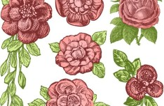 Classic Vintage Hand-painted Flowers Vector 01