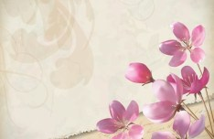 Vector Elegant Pink Flowers with Parchment Background 01