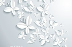 3D White Butterfly Background Vector 02