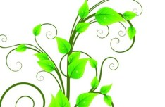 Fresh Green Floral Background Vector 02