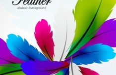 Vector Colorful Abstract Feathers Background 05