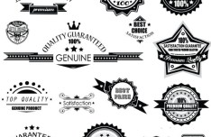 Set Of Vector Black and White Badges with Ribbons 01