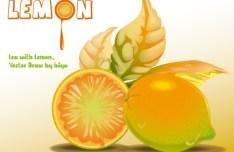 Fresh Lemon Vector Illustration