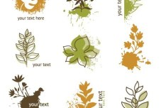 Clean Hand-Drawn Floral Patterns Vector 01