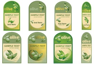 Set Of Vector Olive Oil Bottle Labels