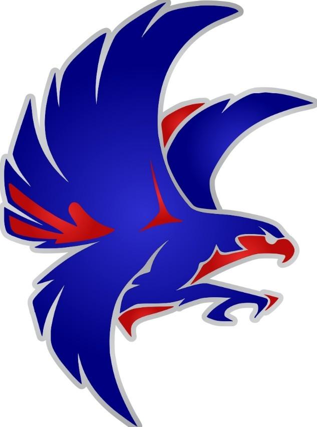 Vector Falcon Hawk