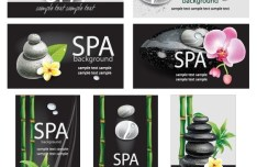 Natural Body Spa Business Card and Banner Designs Vector 01