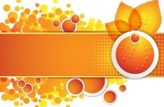 Orange Leaf and Butterfly Vector Frame 04
