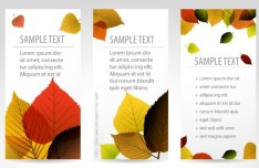 Vector Fresh Vertical Banners with Maple Leaf Background 02