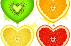 4 Vector Fruit Love Heart