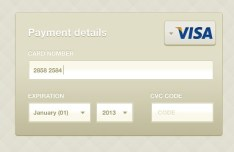 Credit Card Payment Details Interface PSD