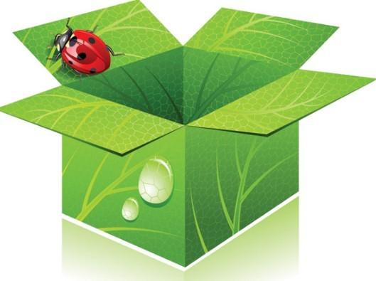Green ECO Concept Cardboard Box