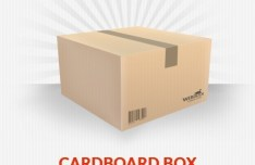 Simple Corrugated Cardboard Box PSD