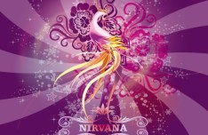 Bright Shining Phoenix Nirvana Illustration Vector