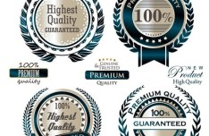 Set Of Vector Dark Blue Quality Guaranteed Badges
