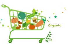 Vector Green Illustration Of Organic Foods 04