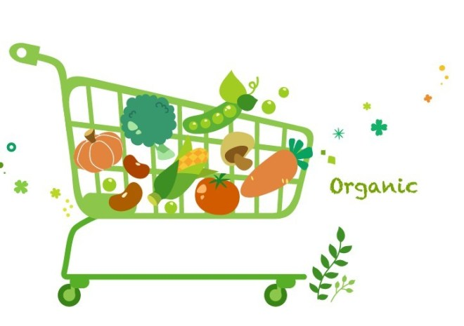 Vector Green Illustration Of Organic Foods 04
