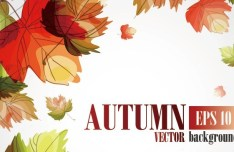 Hand Painted Autumn Maple Leaves Background Vector 02