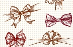 Set Of Hand Painted Vintage Bows Vector
