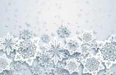 Elegant White Snowflakes Background Vector 01
