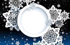 Elegant White Snowflakes Background Vector 04