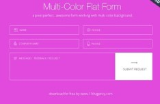 Multi-Color Flat Form UI PSD