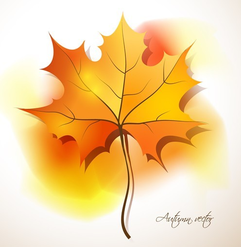 Autumn Yellow Maple Leaf Design Vector 02