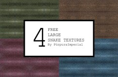 4 Large Snake Textures
