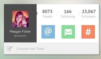 Flat Twitter User Profile Widget PSD